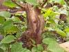 4blog-2012-08-07_19-00-41