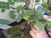 4blog-2012-08-12_17-48-30