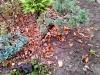 4blog-2012-11-25_16-15-31