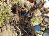 4blog-2012-04-01_12-42-26