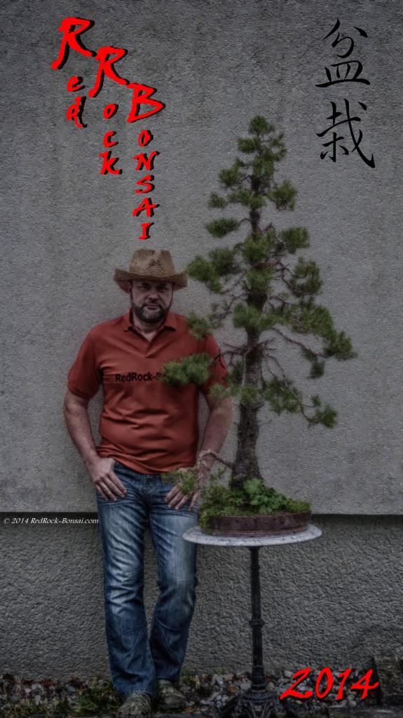 redrock-bonsai_2014