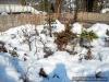 Blick aufs Winterquartier der Outdoor-Bonsai