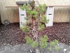 4blog-2012-03-17_17-23-48