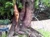 4blog-2012-08-24_18-04-16