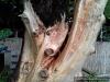 4blog-2012-08-24_19-41-21