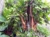 4blog-2012-09-04_19-33-57