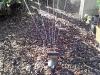4blog-2012-05-28_18-07-34