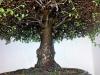 4blog-20120209_190312