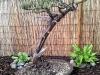 4blog-2012-05-14_19-40-04