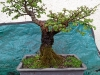 4blog-2012-04-13_14-26-23