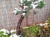 4blog-2012-10-28_15-56-53